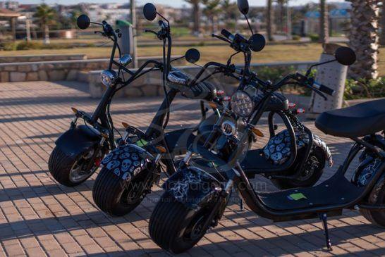 Velitcom Citycoco - scooter électirque 2020 3
